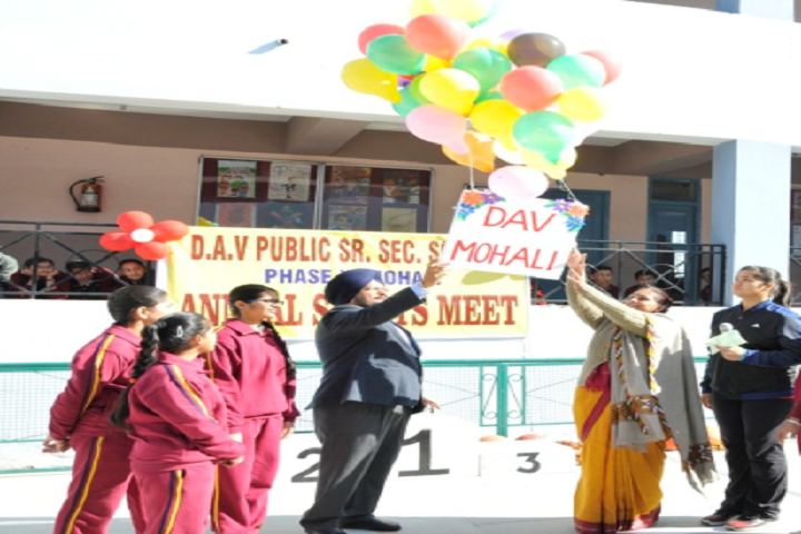 Dav Public Senior Secondary School- Others