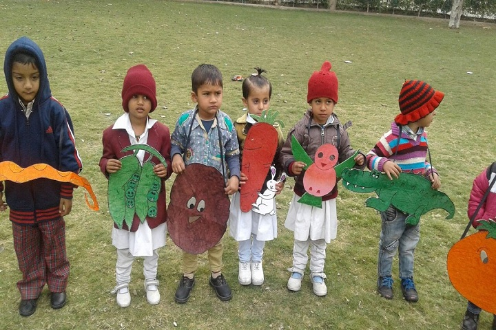 Dayanand Chanan Lal Senior Secondary School-Fancy Dress