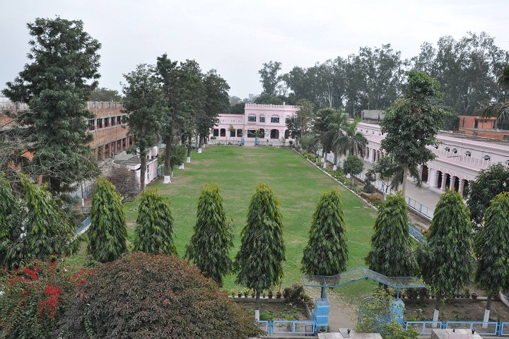 Dayanand Model Senior Secondary School-School