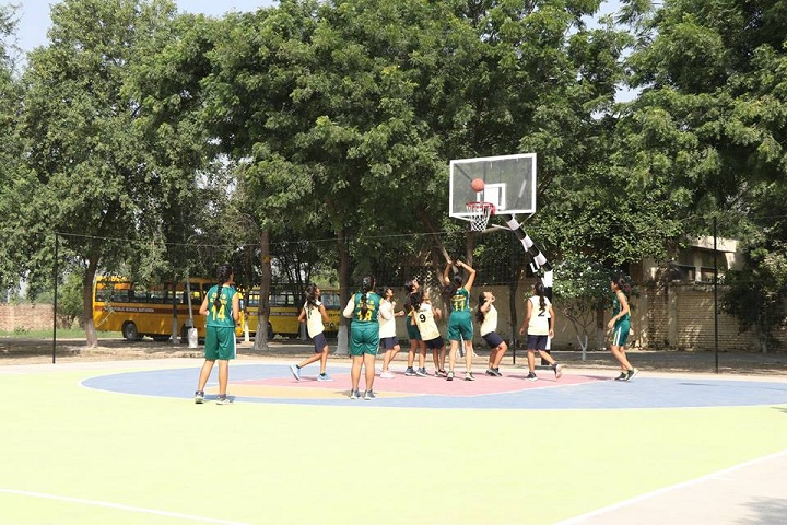 Delhi Public School- Sports