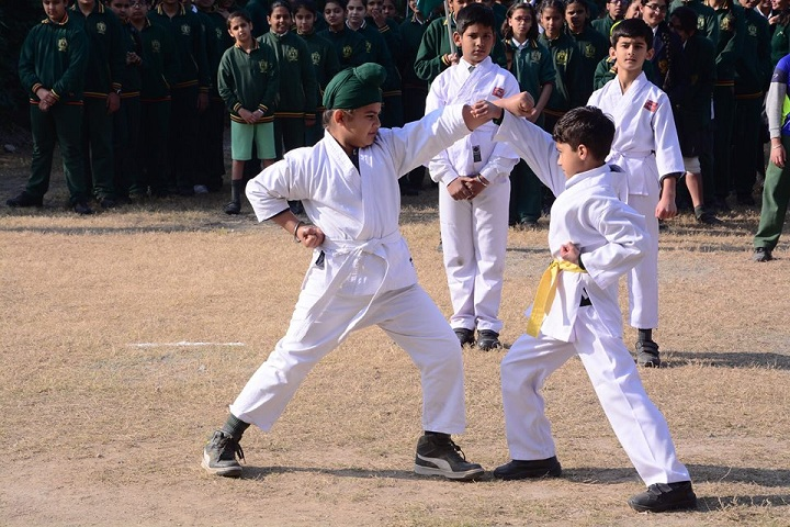 Delhi Public School- Karate