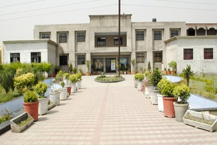 DIPS School-Campus View