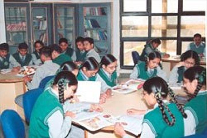 DIPS School-Library