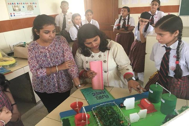 DIPS School-Exhibition