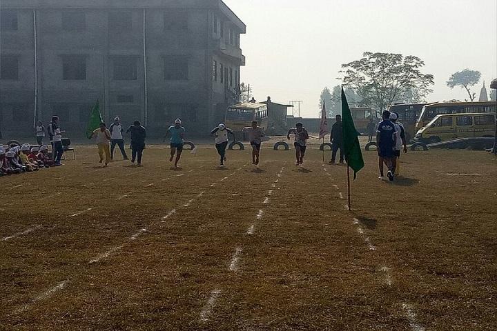 DIPS School-Sports