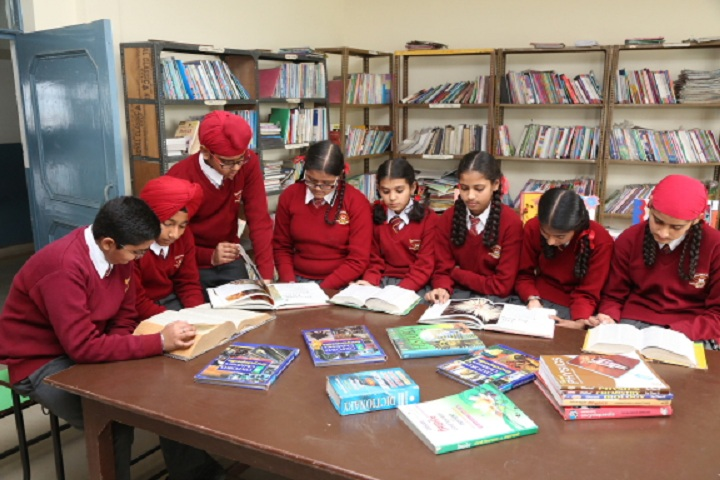 Doaba Public School- Library
