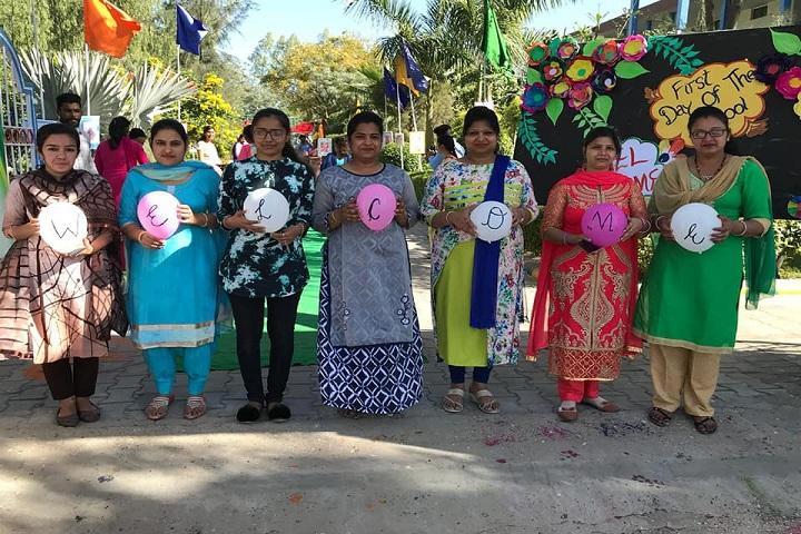 Dr Dev Raj Dayanand Anglo Vernacular Senior Secondary Public School-Celebrations