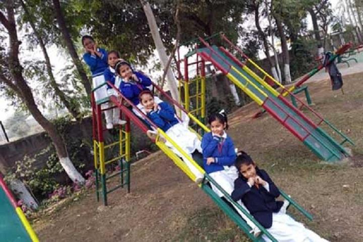 Dr Dev Raj Dayanand Anglo Vernacular Senior Secondary Public School-Playground