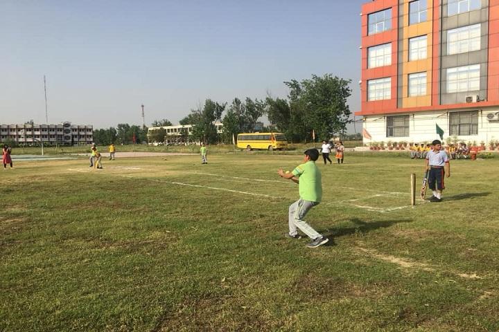 G D Goenka Public School-Cricket