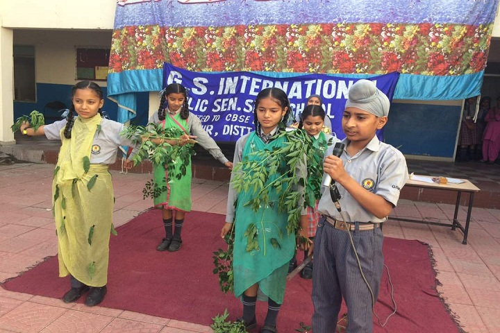 G S International Senior Secondary Public School-Other Celebrations