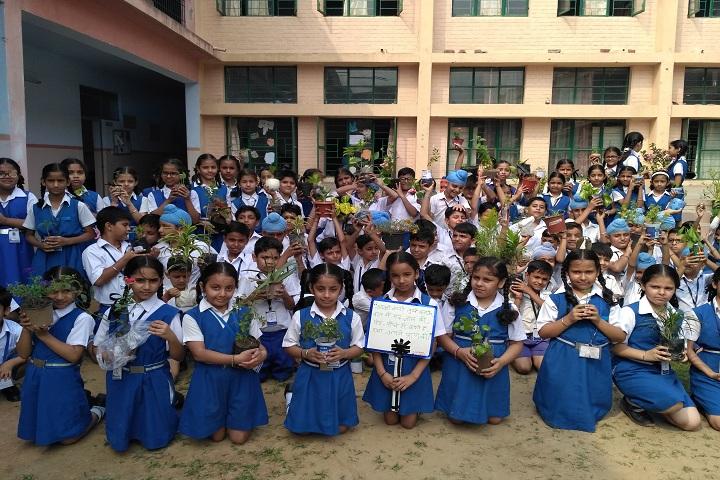 Gem Public School-Plantation