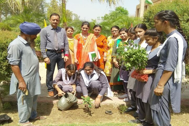 Golden Earth Convent School-Planting Tree