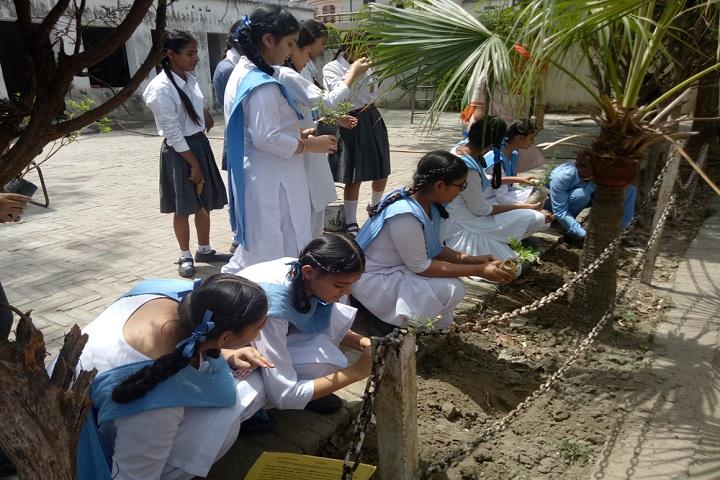 Guru Amar Dass Public School-Tree Plantation