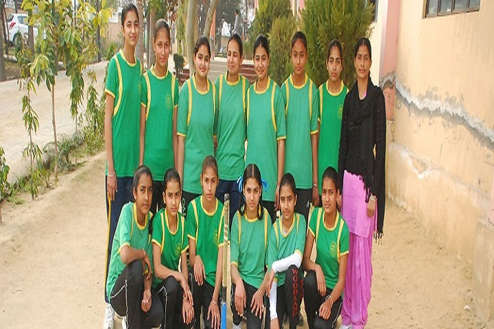 Himalaya Public Senior Secondary School-Sports Team