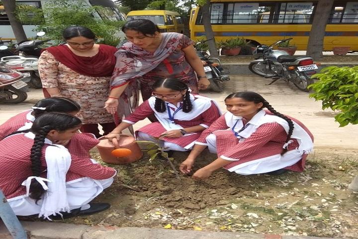 Holy Angel School-Plantation