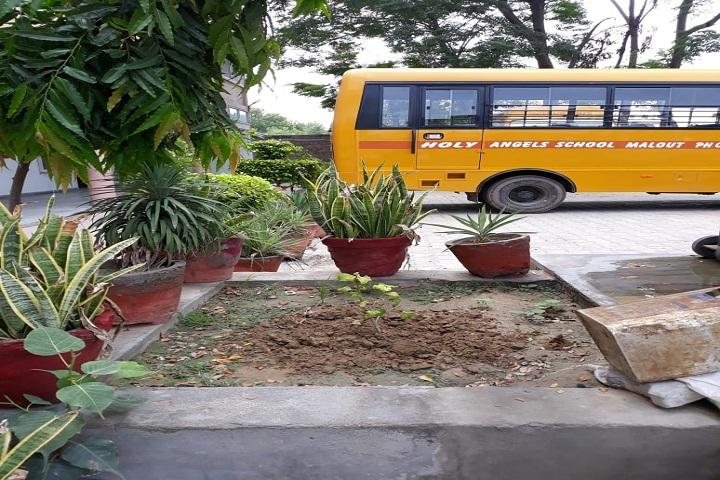 Holy Angel School-Transport