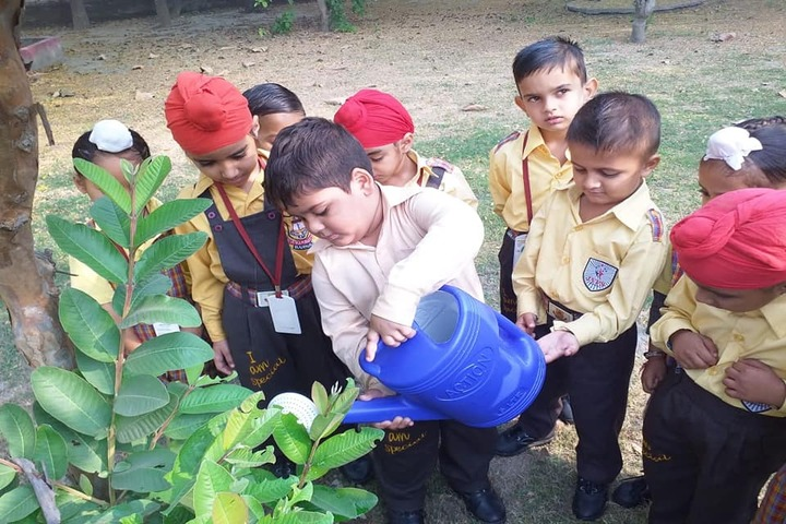 Jai Vatika Public School-Plantation