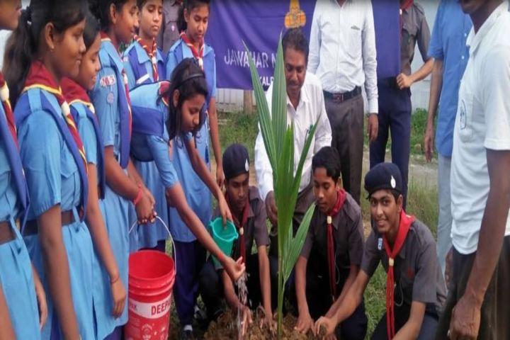 Jawahar Navodaya Vidyalaya-Planting Tree