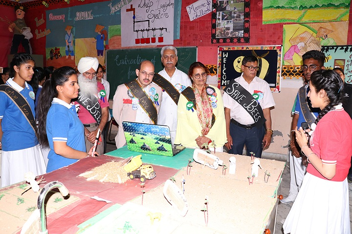 Kamla Nehru Public School-Activity