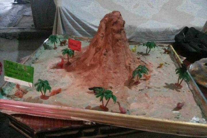 Lakshmi Devi Sahni School-Science Experiment