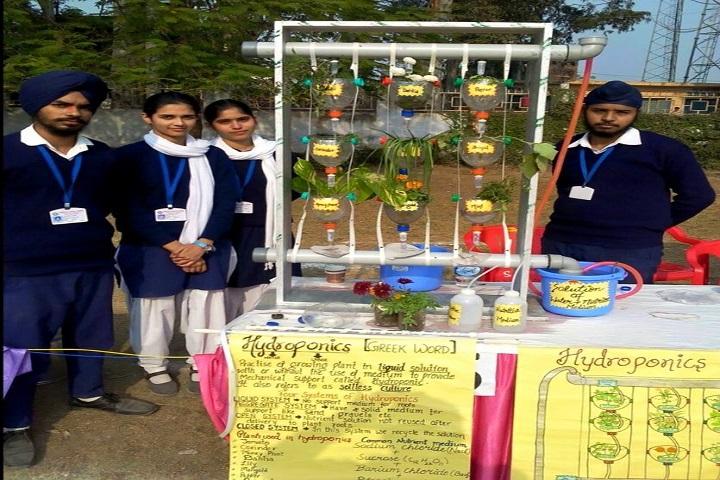 Marigold Public School-Students Project