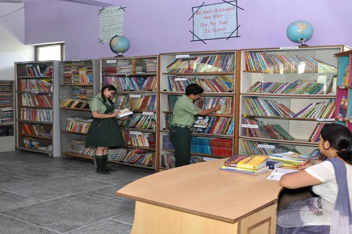 Mata Gujri Public School-library