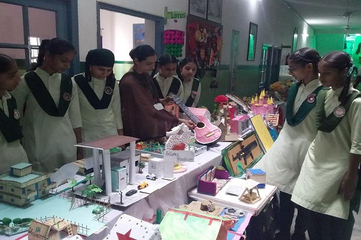 Mata Gujri Public Senior Secondary School-Science Exhibition