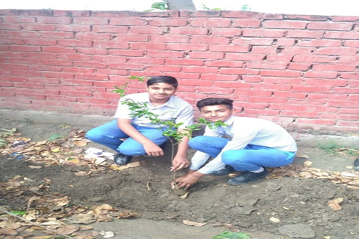 Mata Sahib Kaur Public School-Green Day
