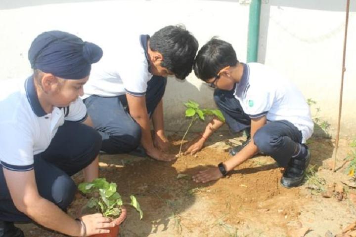 Mayor World School-Green day