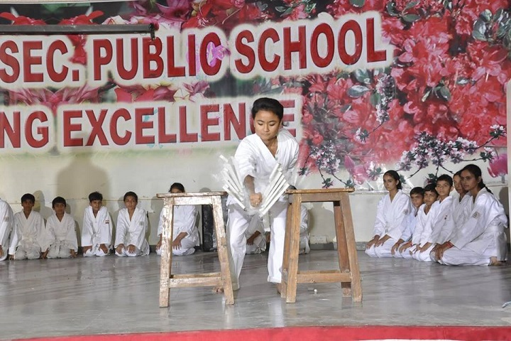 Mela Devi Kalra Arya School-Martial Arts