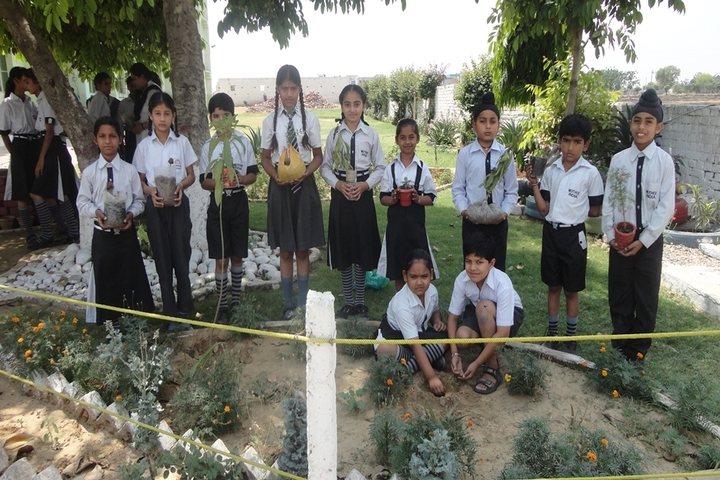 Mother India Public School-Plantation