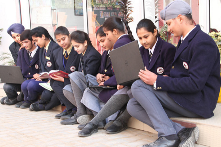 Nand Singh Memorial Public School-Student Projects