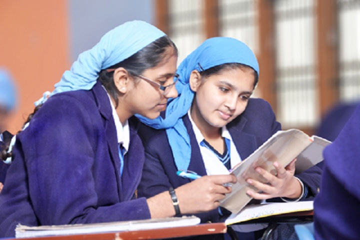Nankana Sahib Public Senior Secondary School-Library