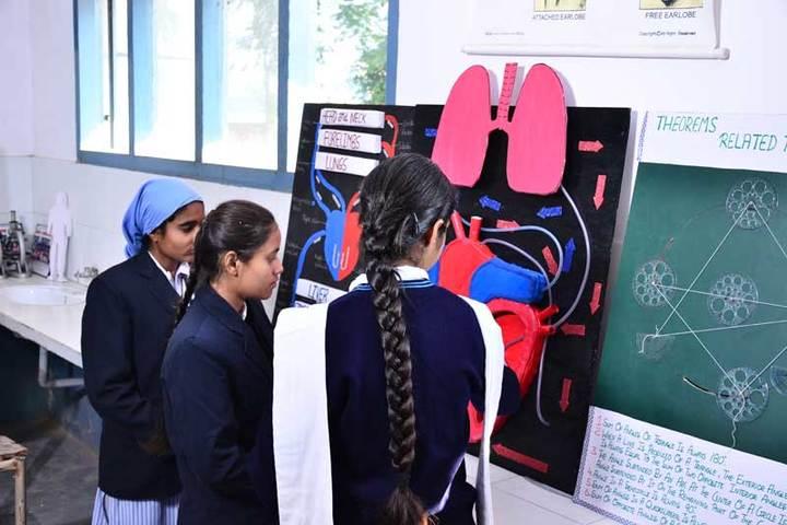 Nankana Sahib Senior Secondary School-Biology Lab