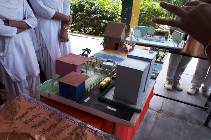 Netaji Model School-Science Exhibition