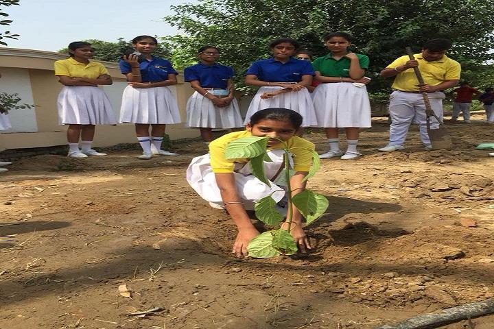 Oxford School-Planting