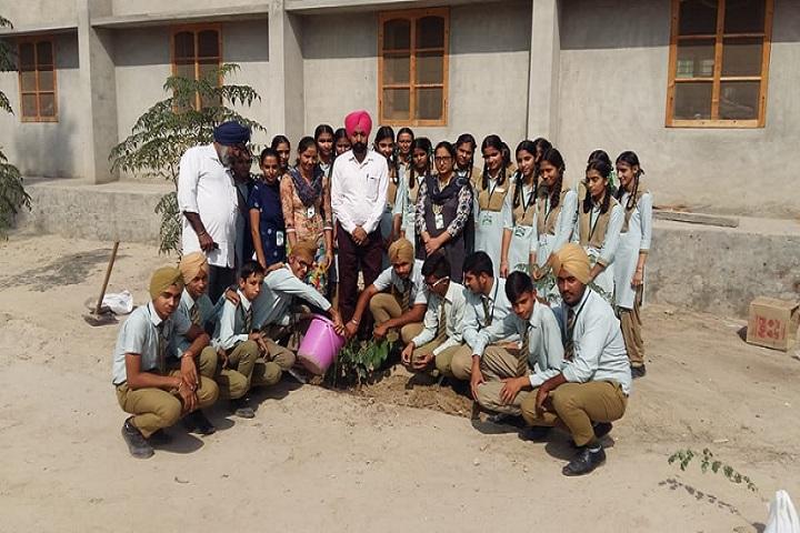PST Memorial Public School-Tree Plantation