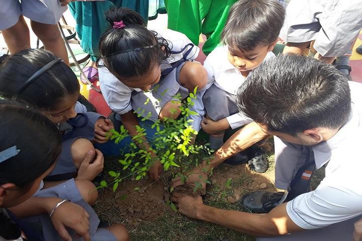 Paragon Senior Secondary School-Plantation