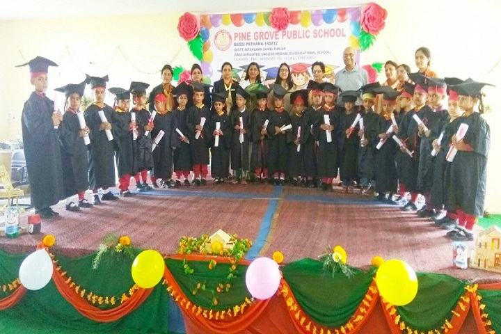 Pine Grove Public School-Annual Day Celebrations