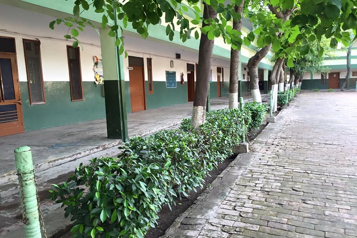 Punjab Public Senior Secondary School-School Area