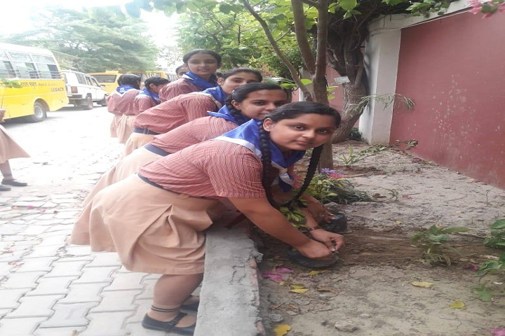 Ryan International School-Plant A Tree