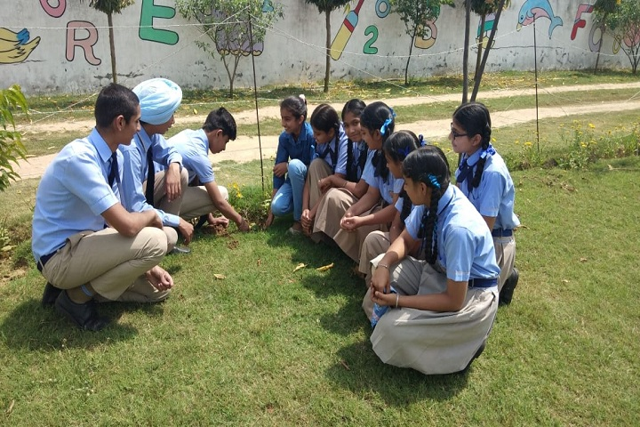 Saffron City School-Plant a Tree Program