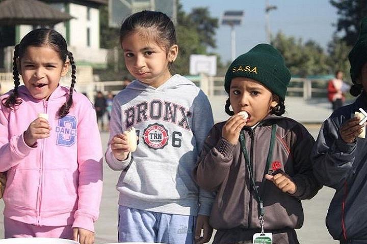 Sahibzada Ajit Singh Academy-Kids