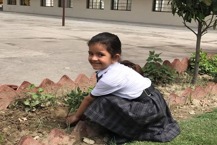 Saint Bir Santosh Public School-Others plantation