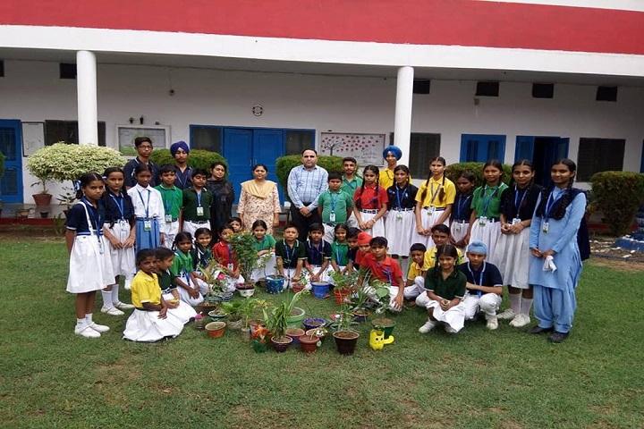Saint Soldier Convent School-Activity