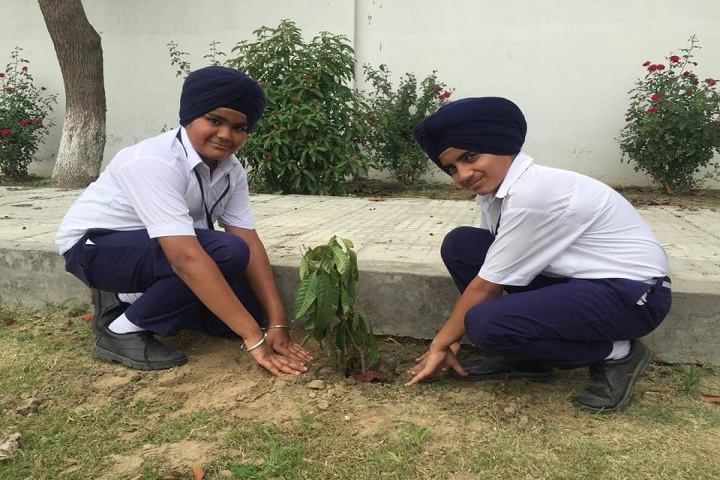 Sant Baba Bhag Singh International School-Planting