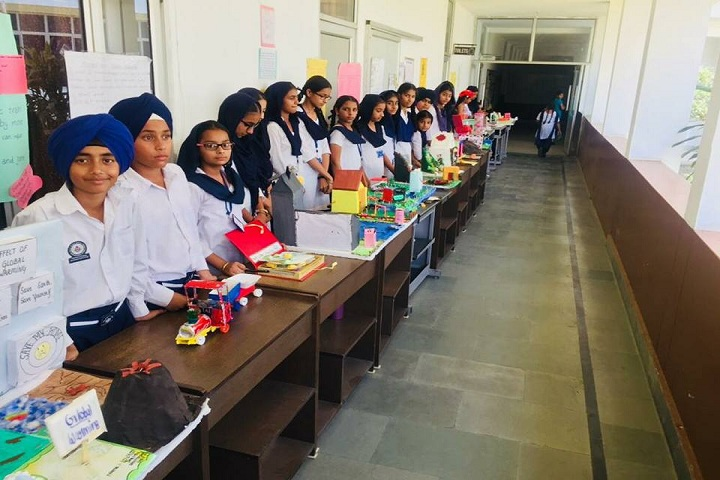 Sant Baba Bhag Singh International School-Exhibition