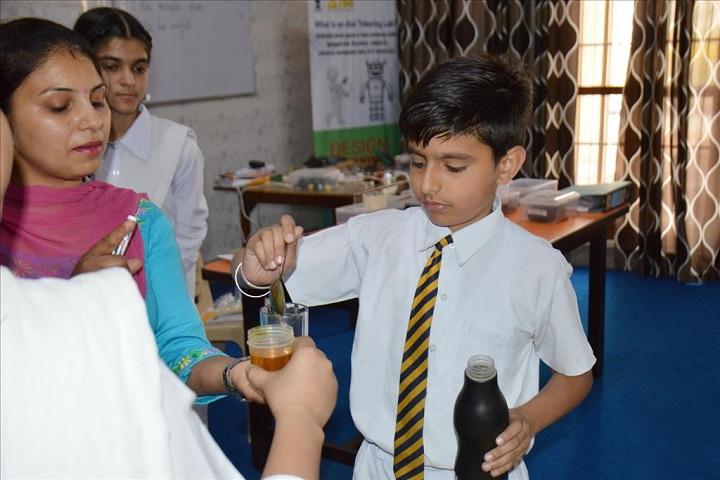 Sant Ishar Singhji Memorial Public School-Activity