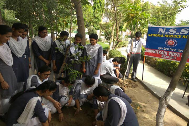 Sarvhitkari Vidya Mandir-Tree Plantation