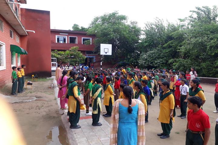 Shaheed Babu Singh Public School-Event